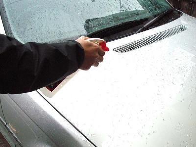 如何清洁鸟粪不会伤车漆 千万别用车钥匙