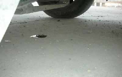 汽车漏油需要重视 教您六大维护的措施
