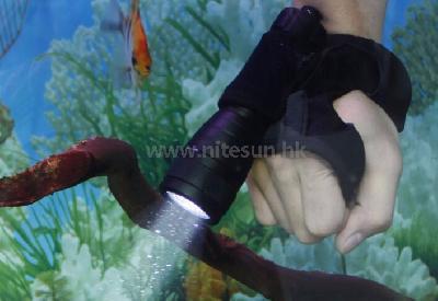 水下摄影补光潜水手电筒科普(干货)