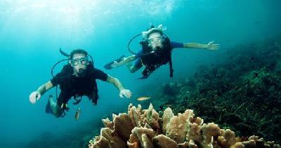 潜水轻装备三宝:面镜、呼吸管、脚蹼