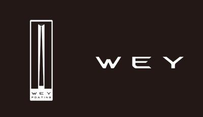 WEY VV6