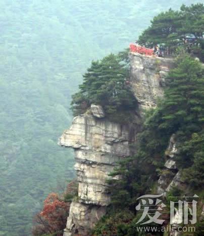 近日,一张拍摄于江西庐山风景区的照片引发网友围观.
