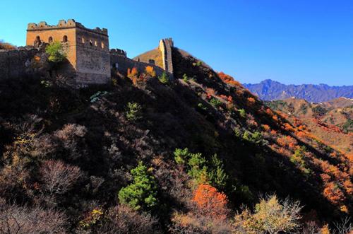 新疆伊宁 满眼都是异域风情的汉人街